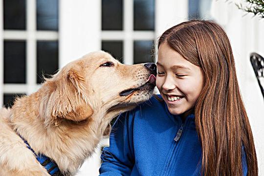 为什么狗狗喜欢舔主人的手或脚